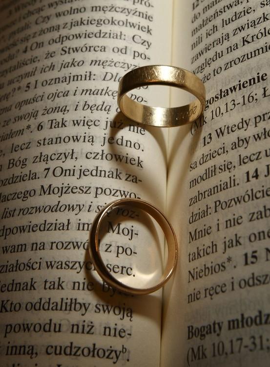 Dlaczego Na ślubie Nie Będzie Alleluja Ze Shreka